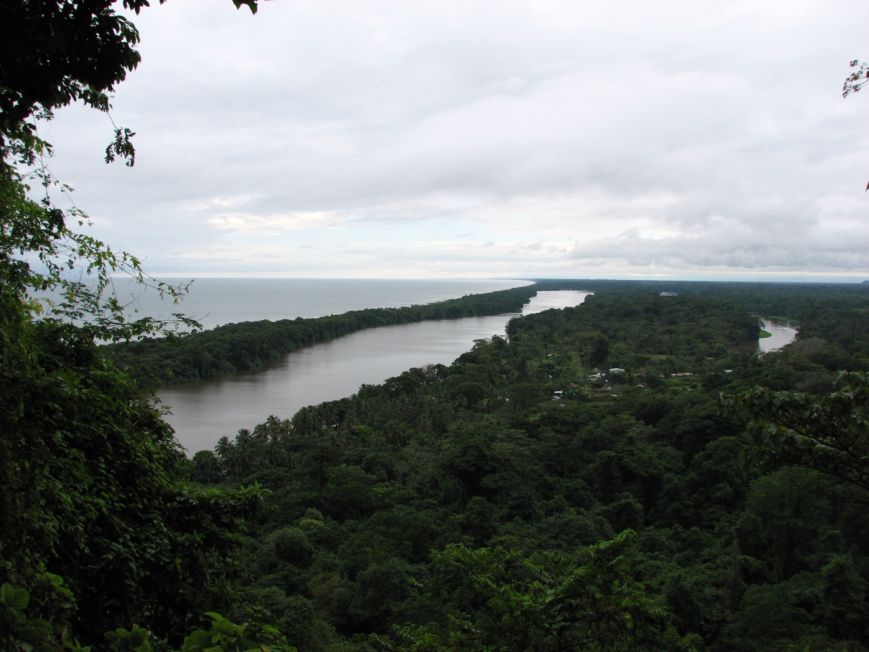 Tortuguero: a stunning national park filled with  rainforest and canals